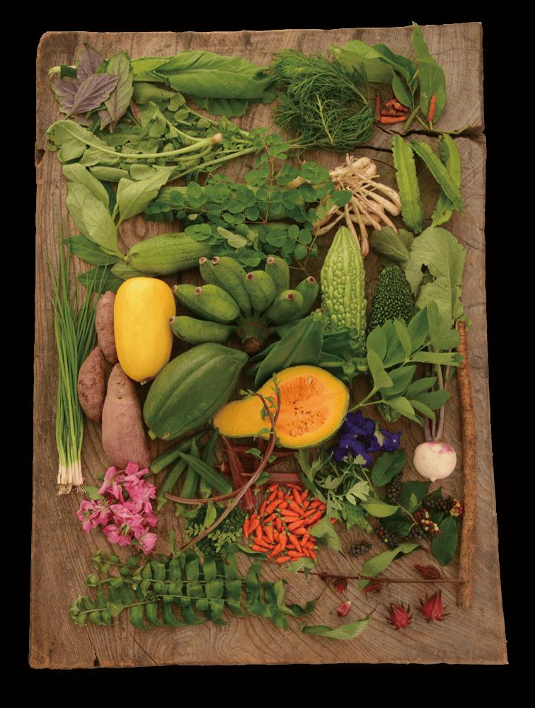 石垣島野菜